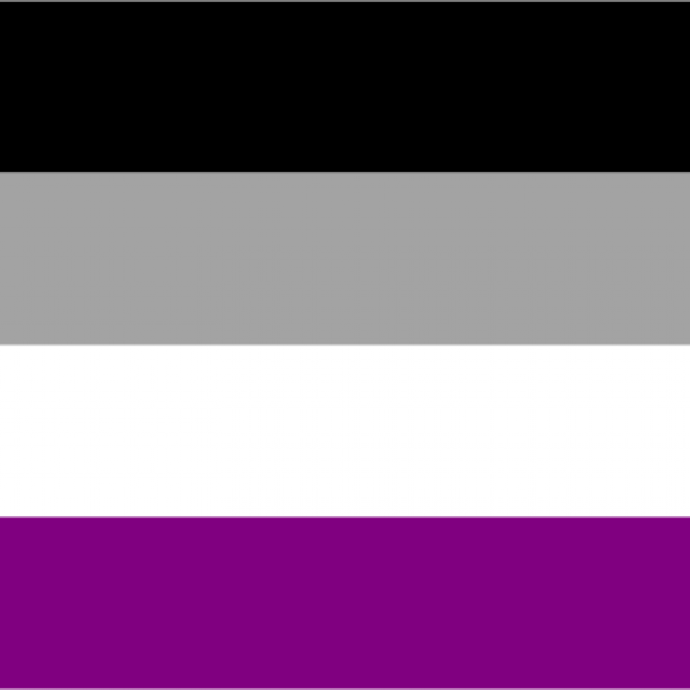 Asexualität Pride Flagge